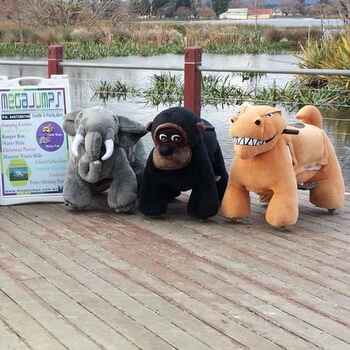 Battery Operated Animals includes operators