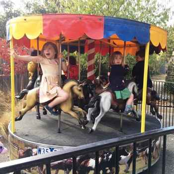Merry Go Round includes operator